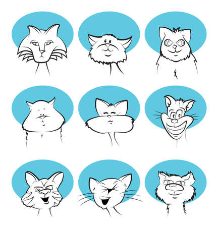 calico whiskers: Cat Cartoon Faces Illustration