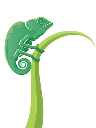 Green lizard cartoon holding onto tall grass with a curled tail