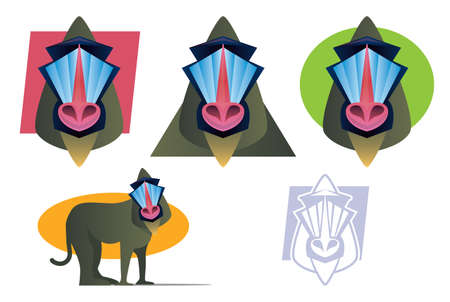 Various colorful Baboon Illustrations Collection Vector