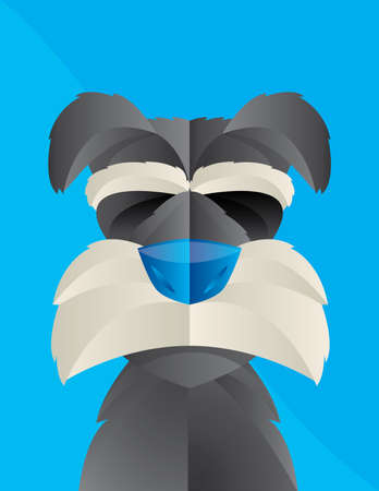 groomed: Cute Illustration of a Schnauzer dog with Blue Background