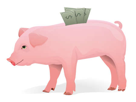 pig out: Realistic Pig with money in his back