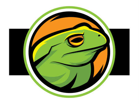 bullfrog: Illustration of a green frog mascot