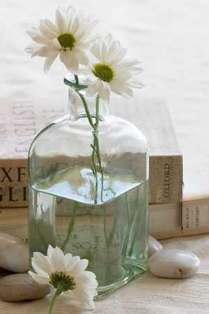 glass vase: A vase of white flowers and two books