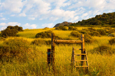 stile: Wooden stile in fence with golden coloured grass and cloudy blue sky in morning light Stock Photo