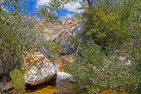Water gushing over rocks Stockfoto