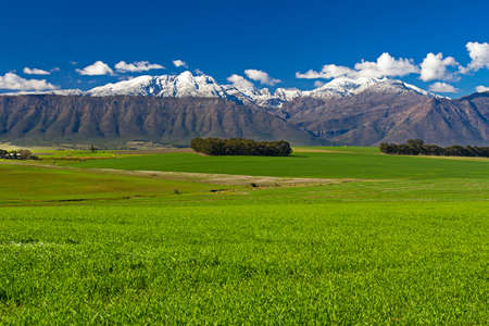 Snow on mountains with green field