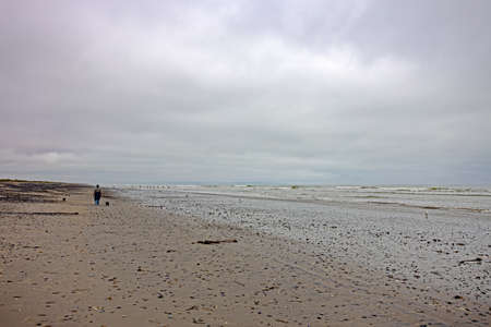 Wide beach after rain with woman and dogs walking Stock Photo