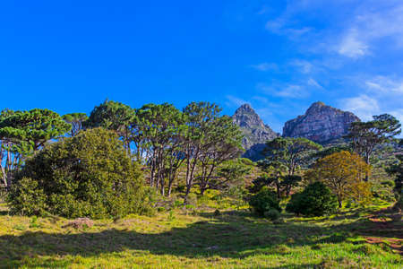 Landscape picture of Devils Peak mountain in Cape Town, South Africa