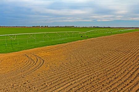 Green farmland with large boom irrigation