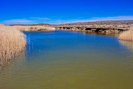 Pool on Riet River in Karoo, Northern Cape
