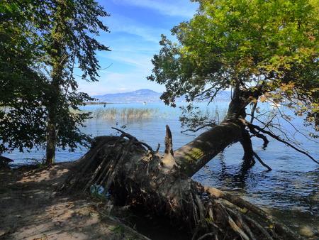 vevey: Shores of Lake Geneva