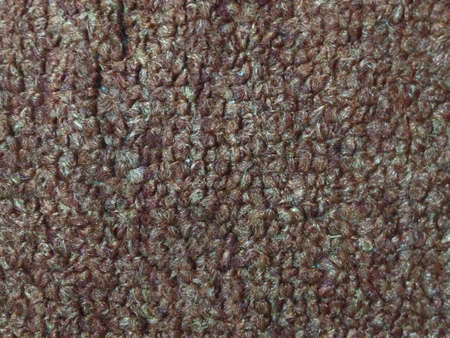 our: Focus of our carpet texture