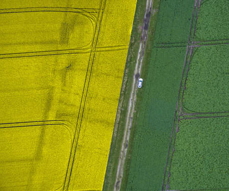 Abstract aerial photograph of arable land with one path, separated into a yellow planted and a green half, taken with the drone Foto de archivo
