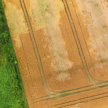 Rectangles and triangles, made by drone. Abstract aerial photograph of fields and weeds