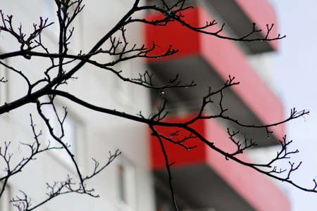 Red old weathered balconies on the facade of an ugly high-rise building , branches in the foreground Stock Photo