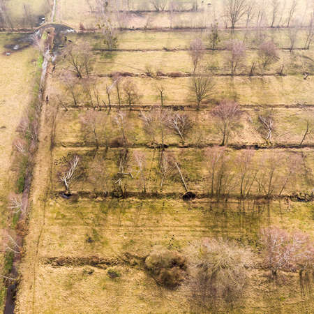 Aerial view from a height of 100 metres from the drainage ditches for a farmland with water draining trees. Made with drone Stock Photo