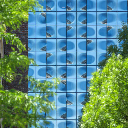 Facade of the Elbphilharmonie in Hamburg, laterally framed by green treetops, Germany Stok Fotoğraf