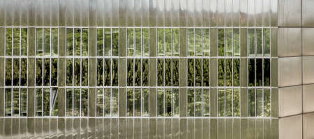 Abstract image of reflecting trees on the glass facade of an office building, Germany Banco de Imagens