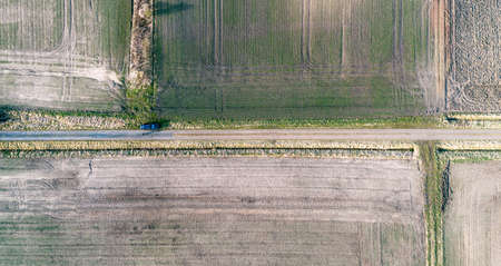 Abstract aerial view, vertical view of a straight dirt road between fields, black car on the way.
