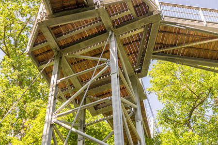 Treetop path through the mixed forest at the northern edge of the Harz, view from below to the supports and wooden planks. Stok Fotoğraf
