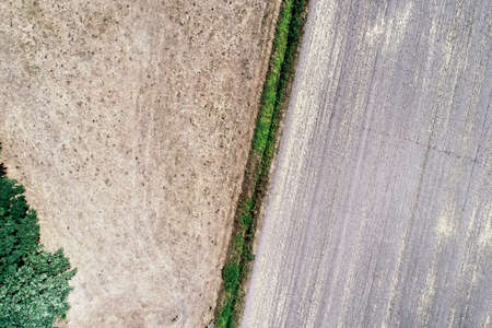 Abstract image from a vertical aerial view of a narrow dry moat cutting through harvested fields.
