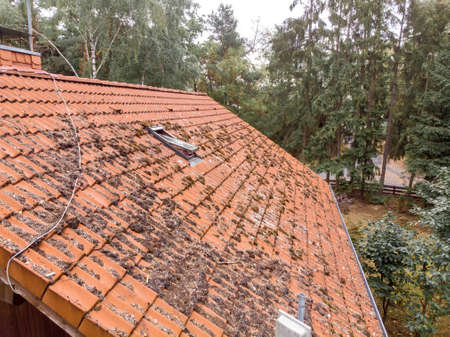 Inspection of the red tiled roof of a single-family house, inspection of the condition of the tiles on one roof side.