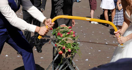 Young bridal couple sawing a tree trunk decorated with roses, German wedding tradition.