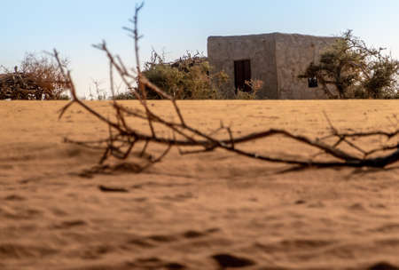Clay hut in the Sahara desert in Sudan with a parched branch on the dry sand in the foreground