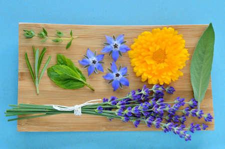 Sommer Kräuter und essbare Blüten auf Holzplatte auf blauem Hintergrund Thymian, Rosmarin, Minze, Borretsch Borago, Ringelblume Calendula officinalis, Salvia und Lavendel Lavandula Auch Schönheitspflege Lizenzfreie Bilder