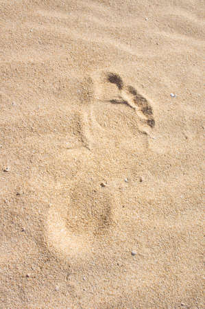 Footprint in sand  Dune, Fuerteventura, Canary Islands, Spain  photo