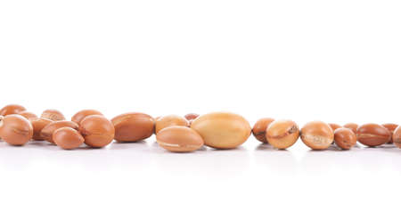 argan: Large group of argan nuts on a white background  Plenty of copy space  Horizontal studio shot