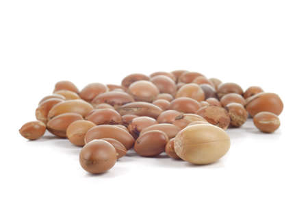 argan: Large group of argan nuts on white background  Plenty of copy space  Horizontal studio shot  Stock Photo