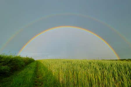 atmospheric phenomena: Rainbow over blue sky and green field Stock Photo