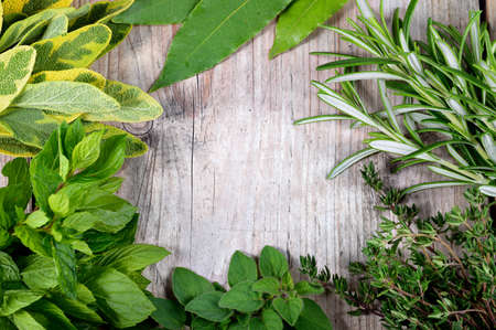 Freshly harvested herbs, herbs frame over wooden background. photo