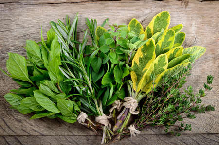 Freshly harvested herbs, bunch of fresh herbs over wooden background. photo