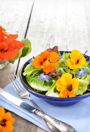 edible leaves: Fresh summer salad with edible flowers nasturtium, borage flowers in a bowl. Copyspace. Stock Photo