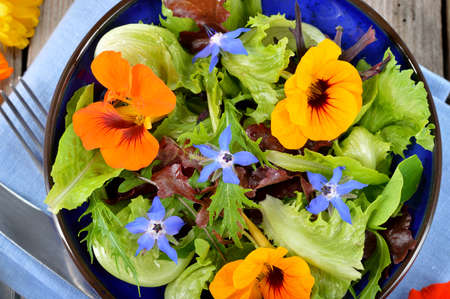 Fresh summer salad with edible flowers nasturtium, borage flowers in a bowl. Top view. Imagens