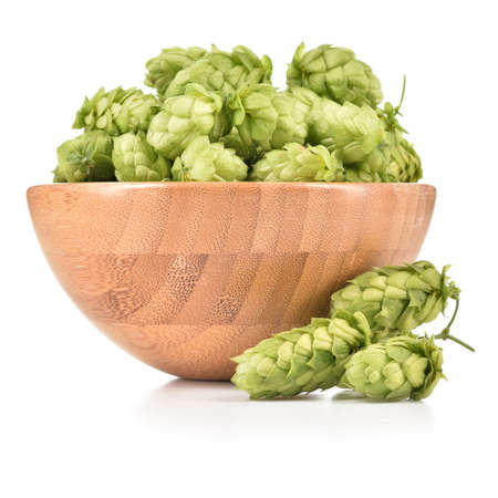 Fresh hops (Humulus lupulus) in wooden bowl isolated on white background. Pile of hops, ingredient for brewery industry.