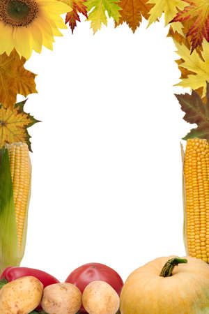 Thanksgiving Day border of vegetables and plants of American origin Stock Photo