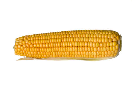 Corn ear on white background, isolated Stock Photo