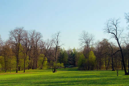 Spring morning in a park. Blue sky and green grass Stock Photo - 656069