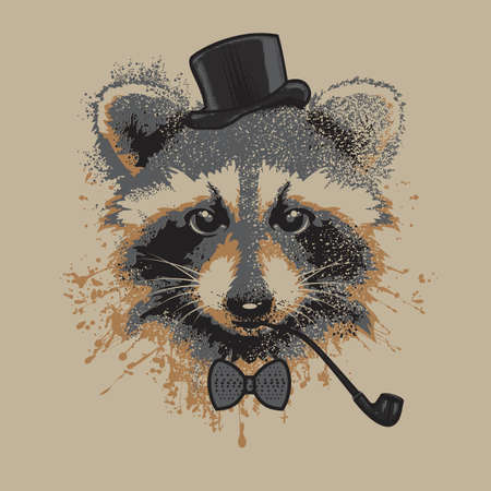 racoon: Raccon  -  Stock Illustration