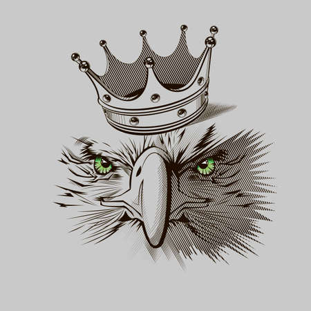 Eagle mascot  -  Stock Illustration Vector