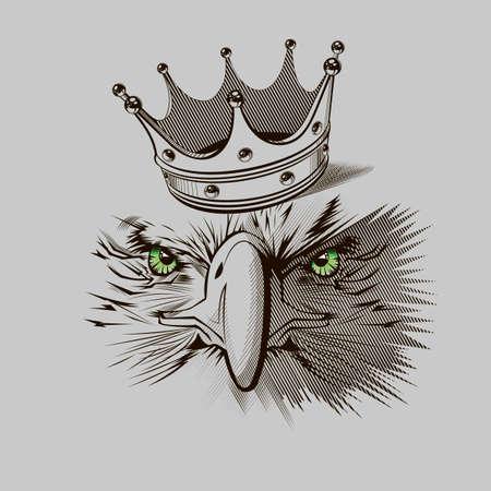 cartoon eagle: Eagle mascot  -  Stock Illustration Illustration