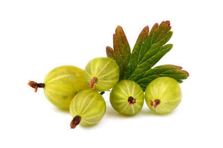 Gooseberries Fresh ripe isolated on a white background