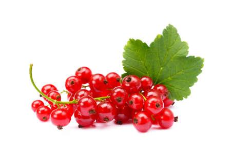 Fresh red currant isolated on white background Stock Photo