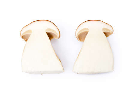 Fresh boletus mushrooms isolated on white background