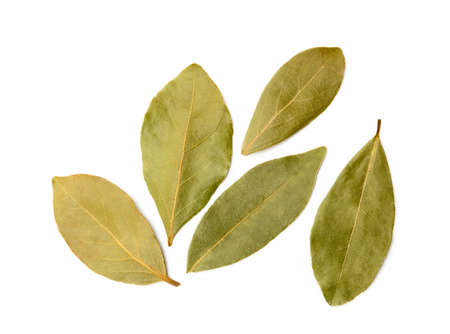 Dried bay leaf isolated on white background