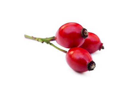 Ripe rose hip isolated on white background Stock Photo