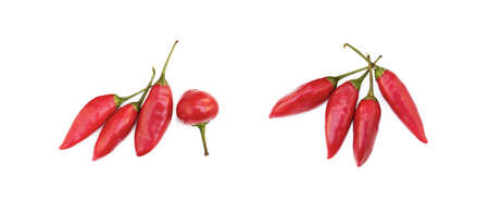 Red hot peppers isolated on white background Banco de Imagens